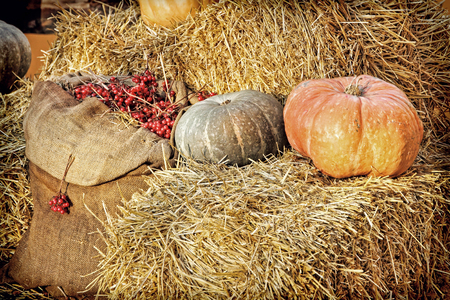 Thanksgiving Display of Pumpkin on hay bale and burlap sack with red berries.Retro style toned image. Stock Photo