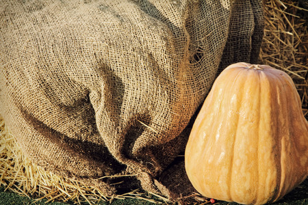 Big Yellow Pumpkin on burlap sack background taken closeup.Retro style toned image.