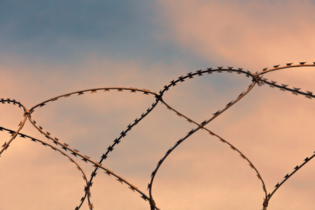 trapped: Barbed wire on sunset sky background taken closeup.