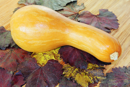 Yellow Pumpkin on color autumn foliage and wooden background. Stock Photo