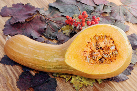 Sliced Pumpkin, red berries on color autumn foliage and wooden background. Stock Photo