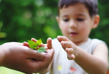 replant: Kid getting plant from adult Stock Photo