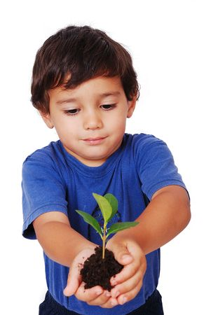 replenish: Little cute child holding green plant in hands