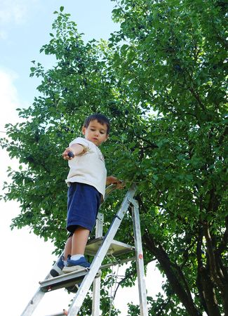 peal: Children taking off the plum in vintage