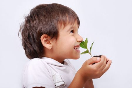 soil conservation: A little cute kid with plant on palms