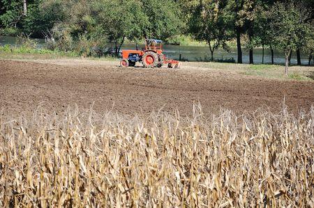 Corn, tractor, field, river photo