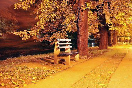 Fall scene, park, trees, alley Stock Photo - 5898489