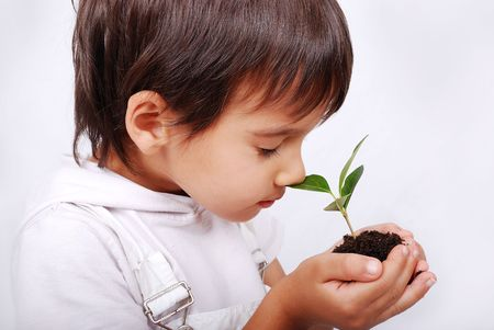 Little cute child holding green plant in hands