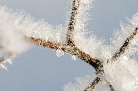 snow background Stock Photo - 6325701