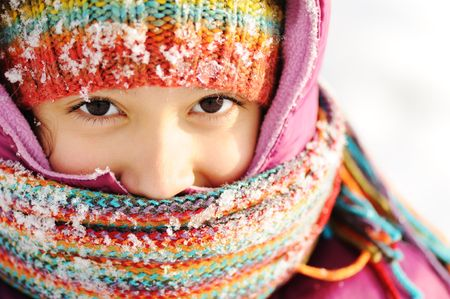 Winter scene, natural beauty Stock Photo - 6325742