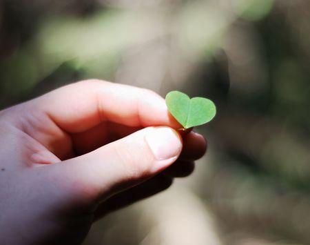 corazon en la mano: coraz�n