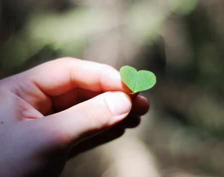 mani cartoon: cuore
