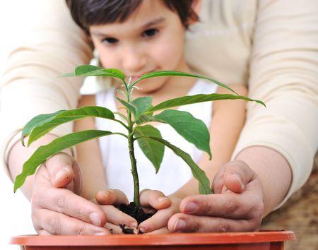 kindergarden: Planting a plant