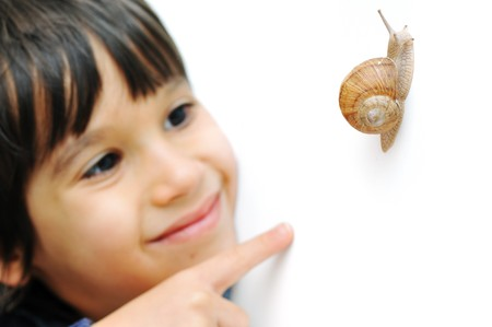 Snail and kid Stock Photo - 7015403