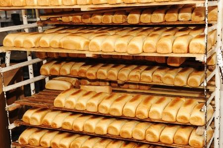 Bread on shelves photo