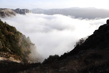 Landscape with fog photo