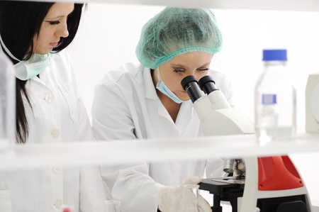 lab technician: Working in lab with microscope