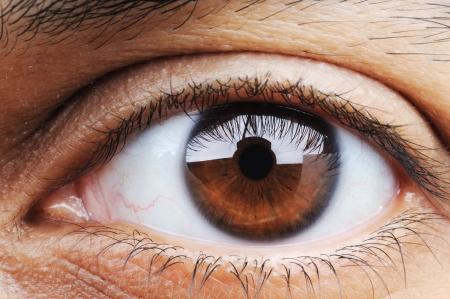 ojo humano: Primer plano del ojo humano, el modo macro