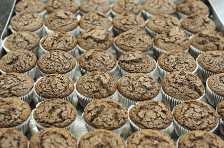 chocolatería: cupcake chocolate en contenedor de papel