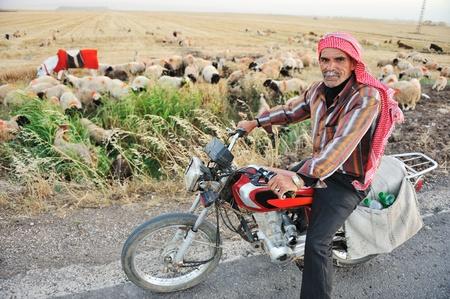 old motorcycle: Senior shepherd on bike