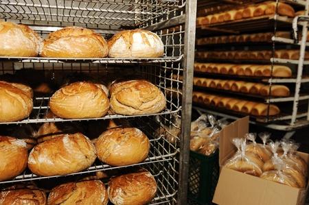 haciendo pan: La fabricación de pan en la fábrica