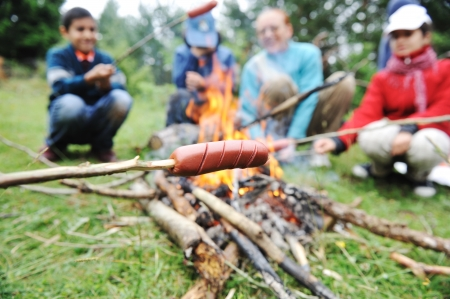 camp fire: Barbecue in nature, group of people preparing sausages on fire (note: shallow dof)