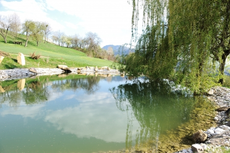 Small lake at golf field photo
