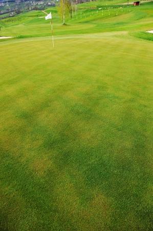 Flag on golf field photo