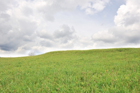 bluer: Meadow and sky
