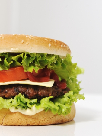 Half burger with copy space for your text or message photo