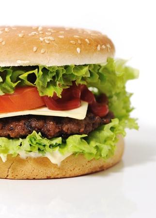 Fantastic hamburger Stock Photo - 14593860