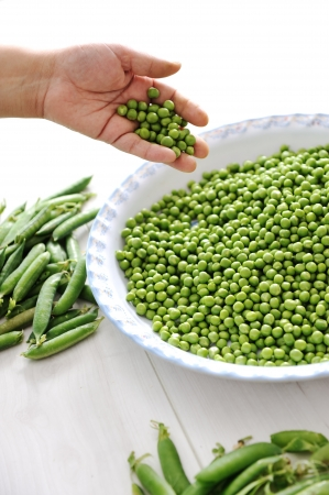 canned peas: Green peas hands Stock Photo