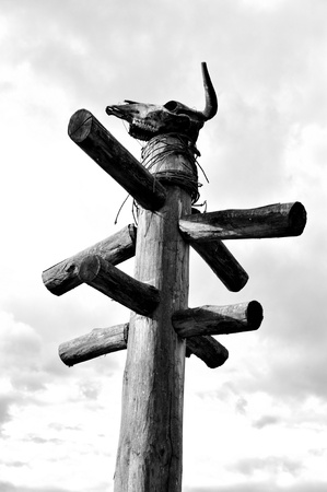 the totem pole: Totem with scull