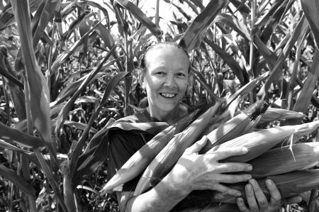 planta de maiz: Mujer campesina recogiendo mazorcas de maíz en el campo