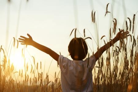 niños felices: Cabrito en campo de trigo