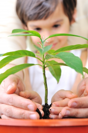 hands holding earth: Father and son carefuly cultivating a plan Stock Photo
