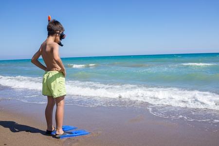 flippers: Disfrutando del verano