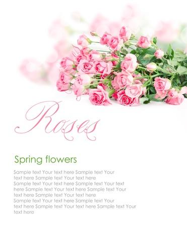 Pink roses postcard design 3(1).jpg Stock Photo
