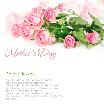 Pink roses postcard design 4(1).jpg Stock Photo