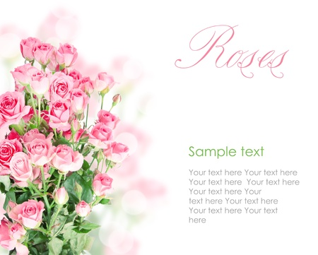 Pink roses postcard design 6(1).jpg Stock Photo - 13057561