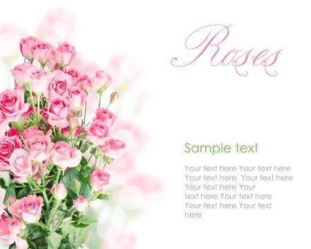 Pink roses postcard design 6(1).jpg Stock Photo