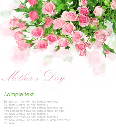 pink roses: Pink roses postcard design 5(1).jpg Stock Photo