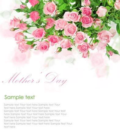 Pink roses postcard design 5(1).jpg photo