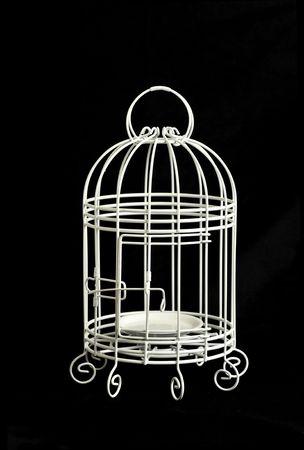 lonely bird: A white Bird cage