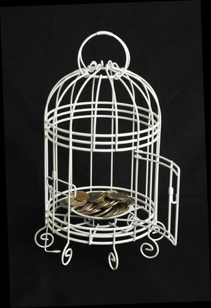 Coins in a bird cage Stock Photo - 6180366