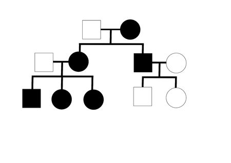Family tree with an occurence of inherited disease
