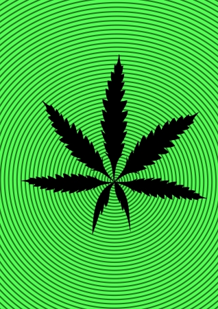 Marijuana leaf on green background Stock Photo