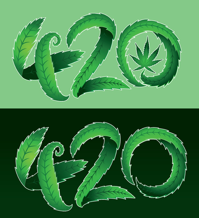 marijuana plant: Green marijuana leaf 420 text vector illustration