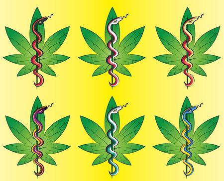 medical symbols: Snake and marijuana leaf symbol vector illustration