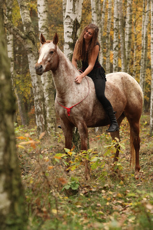 appaloosa: Pretty young girl riding a horse without any equipment in nice forest
